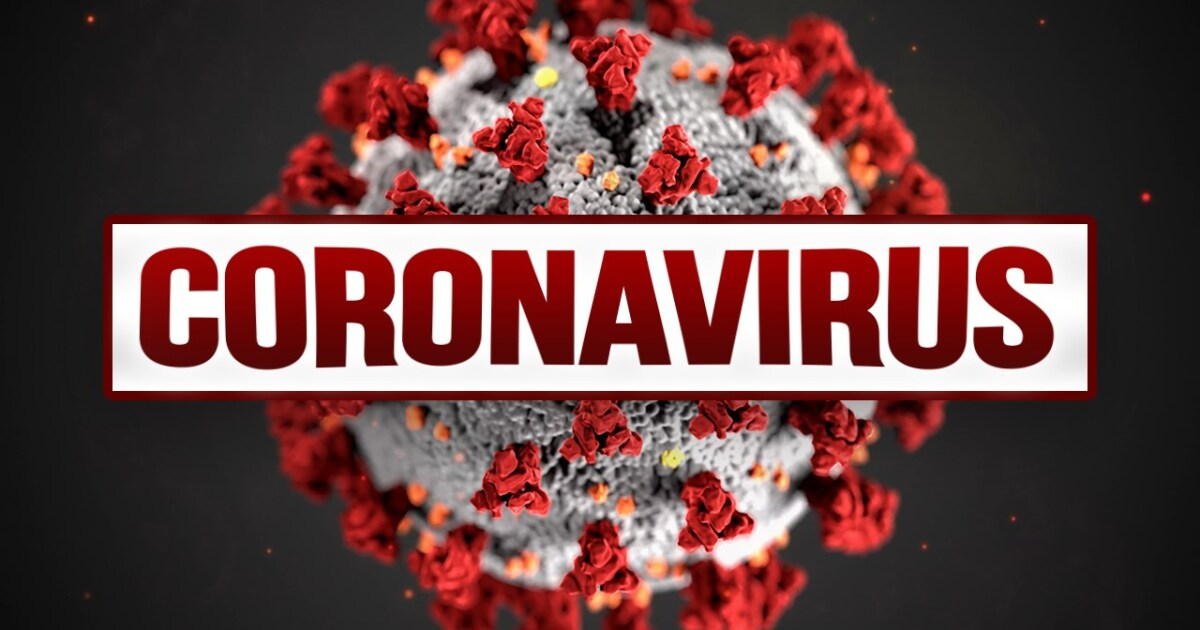 Comparing Coronavirus and the Flu: Key Similarities and Differences - fox13now.com