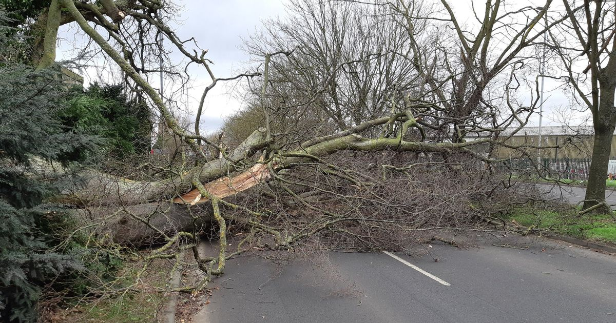 Latest updates on roads closed in Lincolnshire after Storm Ciara wreaks havoc - LincolnshireLive