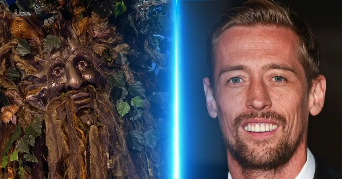The Masked Singer gets even weirder as the tree is unmasked - and it wasn't Peter Crouch - Manchester Evening News