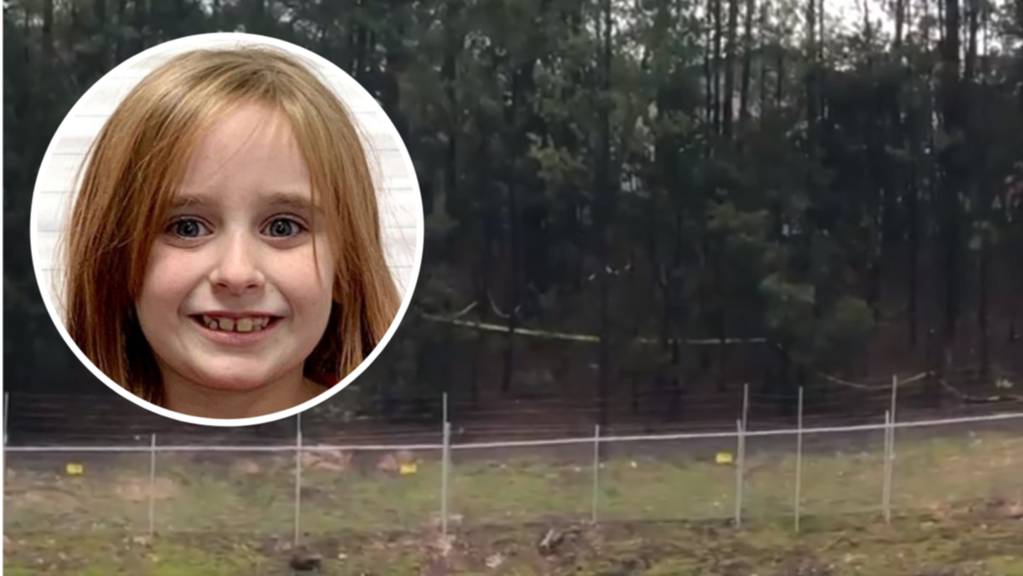 Missing girl Faye Swetlik found dead after vanishing from family's front yard - 7NEWS.com.au