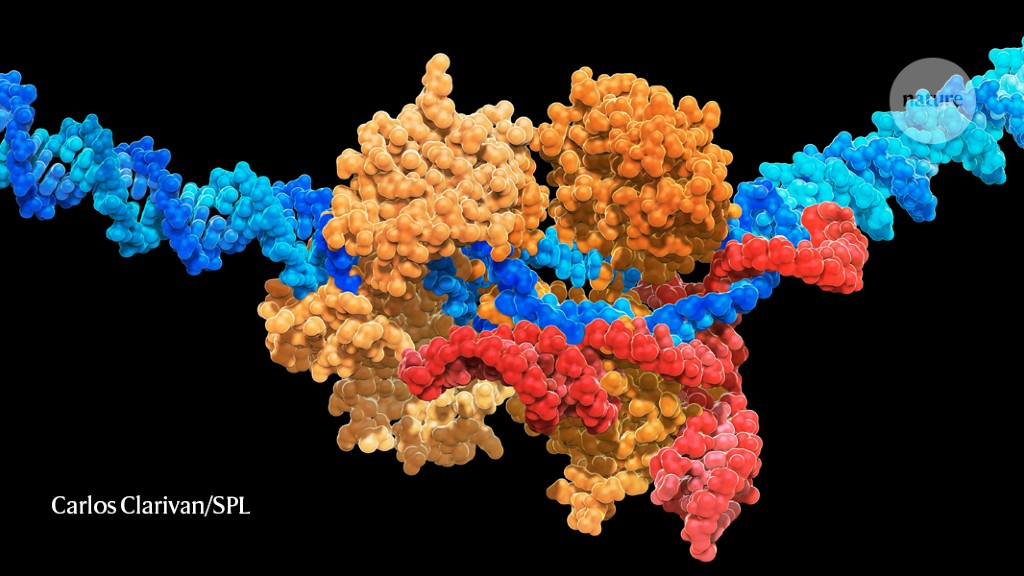 Super-precise CRISPR tool enhanced by enzyme engineering - Nature.com