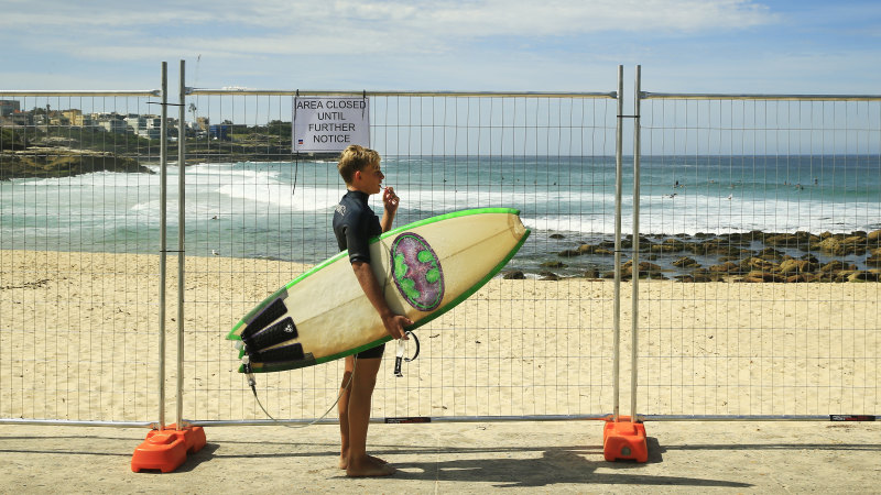 Surfers in Sydney's east are not criminals but they're being treated that way - Sydney Morning Herald