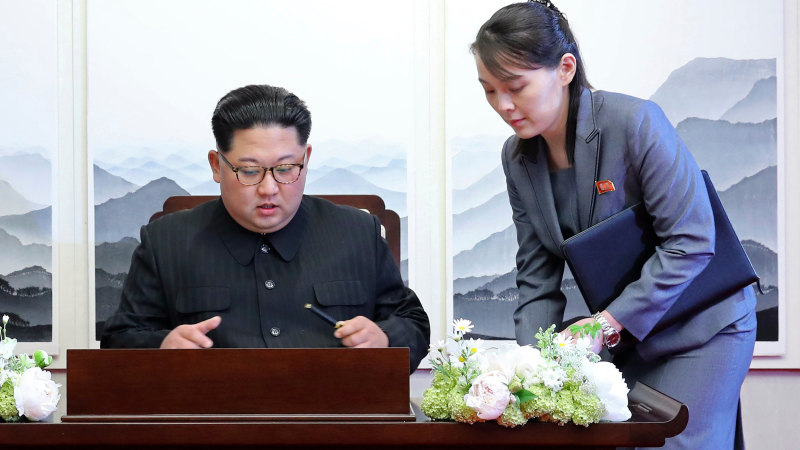 Kim Jong-un's reply to Syrian dictator fails to quash health speculation - Sydney Morning Herald