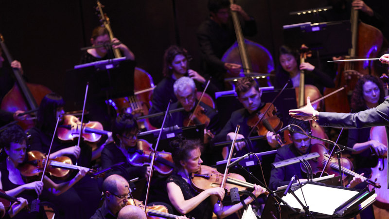 Stood-down musicians 'blindsided' by MSO decision - Sydney Morning Herald