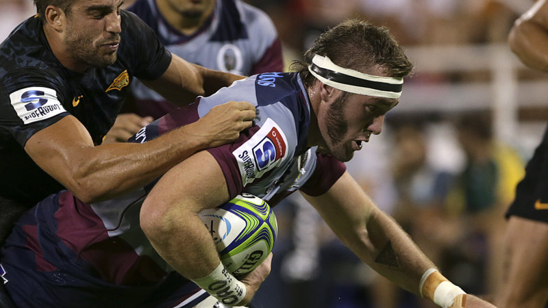 Super Rugby players stood down after refusing to accept pay cuts - Sydney Morning Herald