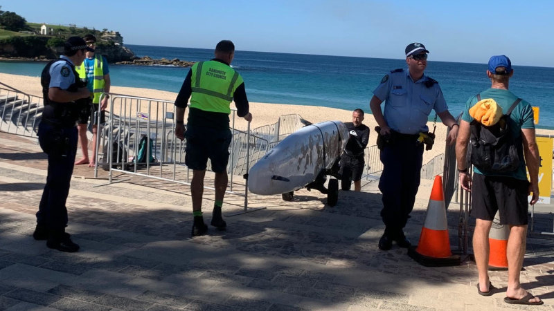 Coogee and Maroubra beaches shut due to crowds - Sydney Morning Herald