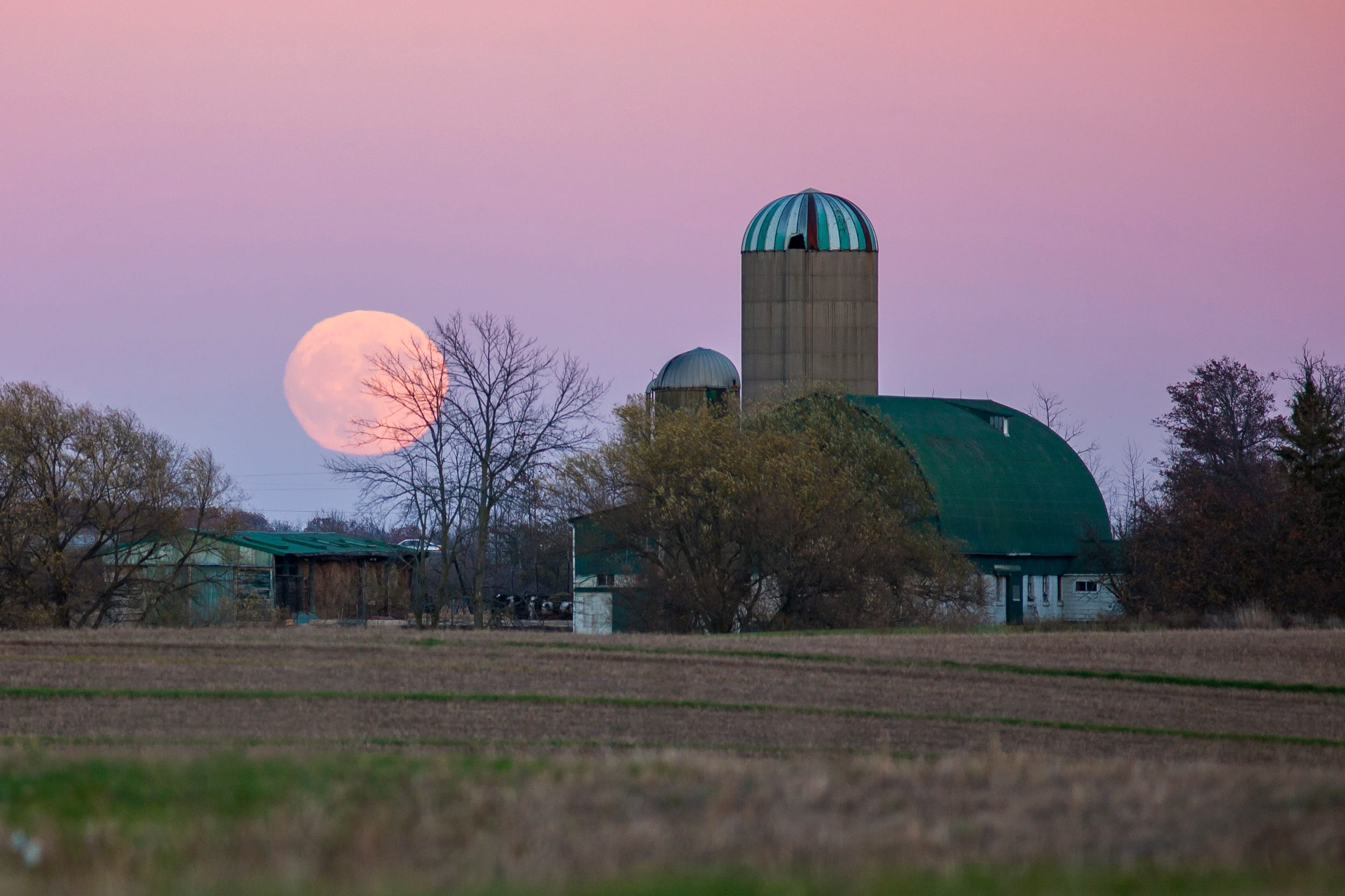When to see the 'Full Pink Moon,' the biggest and brightest supermoon of the year - AZCentral