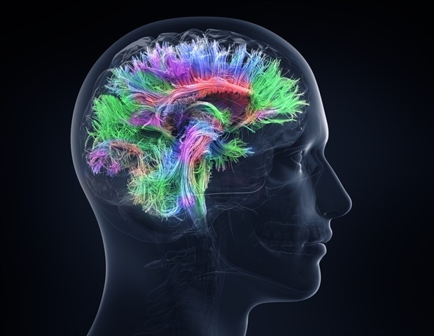 "New technology that ""videos"" brain activity could one day enhance prosthetics - News-Medical.net"