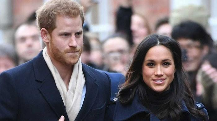 Prince Harry, Meghan Markle beef up security for $8,600 per day after drone intrusion - The News International