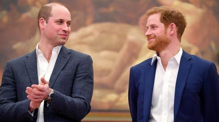 Prince Harry and Prince William split future proceeds of Diana memorial fund - The News International